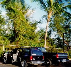 [Two Black Fords on Maui]